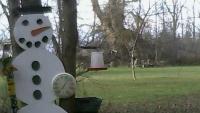 West Seneca - jelenie, wiewiórki