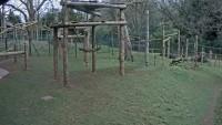 Paignton - Zoo