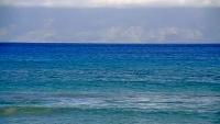 Maui - Kahekili Marine Reserve