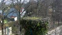 Warzymice - Bociany