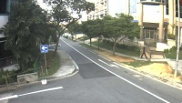 Bukit Timah Road, Kings Road