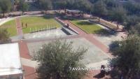 Savannah - Live Views