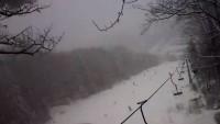 Palenica - Stok narciarski
