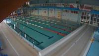 Delfin Swimming pool