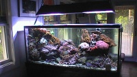 Coral Gables - aquarium
