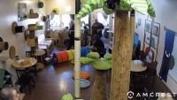 San Diego - The Cat Cafe
