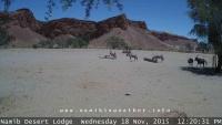 Gondwana - Namib Desert Lodge
