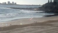 Sunshine Coast - Alex Headland