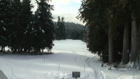 Whistler - The Whistler Golf Club
