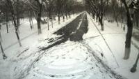 Buzău - Parcul Crâng
