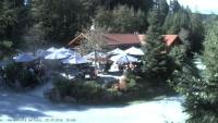 Baiersbronn - Wanderhütte Sattelei