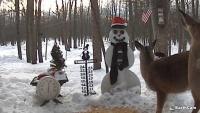 Gaylord - snowman
