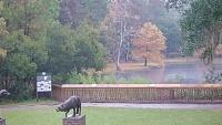 Murrells Inlet - Brookgreen Gardens