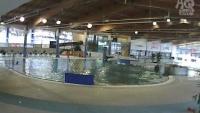 Most - Aquadrom