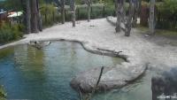 Zurych - Elefantenpark