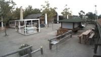 Leinfelden - Biergarten