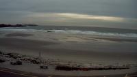 Higgins Playa