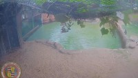 Honolulu - Honolulu Zoo