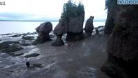 Hopewell Cape - Hopewell Rocks