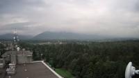 Tršinecas - Javorový
