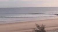Noosa - plaża