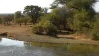 Pont Drift - Pete's Pond