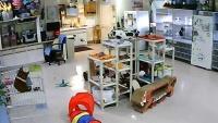 Locust Dale - Siamese Cat Rescue Center