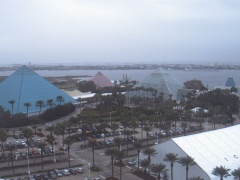 Galveston moody gardens texas usa webcams for Galveston fishing pier cam