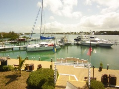 Port of freeport bahamas webcam